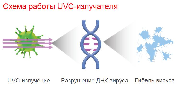 Схема работы UVC излучателя